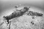 Munda, Western Province, Solomon Islands; a scuba diver swimming over a Bell P-39 Airacobra fighter plane, which crashed into the sea during WWII, resting upright on the sandy bottom, one wing and its propeller still intact