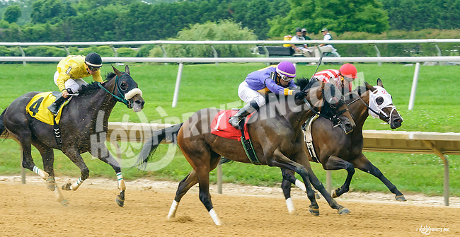 Inner Demons winning at Delaware Park on 7/13/16