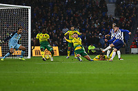 Aaron Connolly (R) of Brighton & Hove Albion has a shot on goal in the first half during Brighton & Hove Albion vs Norwich City, Premier League Football at the American Express Community Stadium on 2nd November 2019
