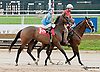 Legal Punch before The First State Dash on Owners Day at Delaware Park on 9/13/14