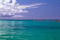 Caribbean seascape