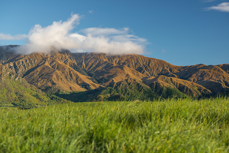 Hills behind Arrowtown, South Island, New Zealand - stock photo, canvas, fine art print