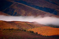 Sunrise and morning fog over the Alaska Range mountains, Denali National Park, Interior, Alaska.