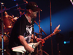 MICHAEL SCHENKER GROUP Michael Schenker ,
