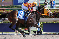 HALLANDALE BEACH, FL - JANUARY 28:  #3 Curlin's Approval with jockey Luis Saez on board wins  Hurricane Bertie G3 Stakes at Gulfstream Park on January 28, 2017 in Hallandale Beach, Florida. (Photo by Liz Lamont/Eclipse Sportswire/Getty Images)