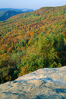 View of Scott Creek Valley<br />