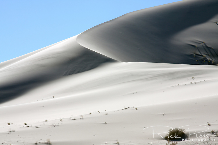 The sands of 680 foot tall Eureka Dunes in Death Valley National Park are known for the strange phenomenon of singing sand. When the sand is completely dry, avalanches down the steepest face of the highest dune emit a sound like the distant drone of an airplane.