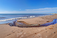 Chaleur Bay at Sainte Cecile, Lamèque Island, New Brunswick, Canada