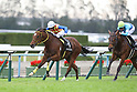 Horse Racing in Kyoto