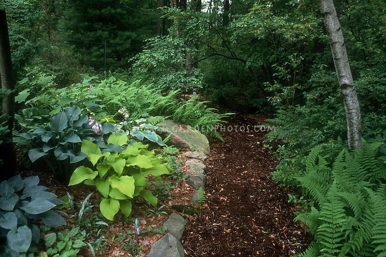 Shade Garden Path: Mulched Wood, Perennials Foliage Plants Hostas Mixture,  Pulmonaria, Ferns