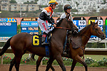DEL MAR, CA  SEPTEMBER 3: #6 Summering, ridden by Drayden Van Dyke, in the post parade of the Del Mar Juvenile Fillies Turf on September 3, 2018, at Del Mar Thoroughbred Club in Del Mar, CA. (Photo by Casey Phillips/Eclipse Sportswire/Getty Images)