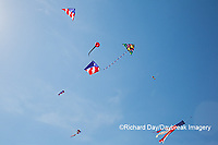 63495-02705 Kites flying at Flagler Beach Flagler Beach, FL