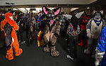 Furry Weekend Atlanta - Jonus gathers along with other furries before the start of the furry parade, one of the most popular events of the convention...Photo by Raymond McCrea Jones