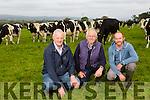 FARMING SUPP: l-r Jerome Leen of Munster Cattle Breeding, with John Mason and Niall Mason of Mason's Farm Ballyseedy.