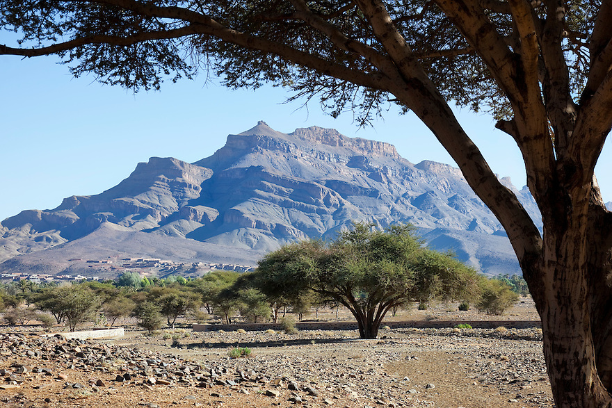 Jebel Kissane mountain with Acacia trees, Agdez, Draa valley, Morocco.