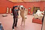 Man With Kangal Dog In Ephesus Selcuk Museum