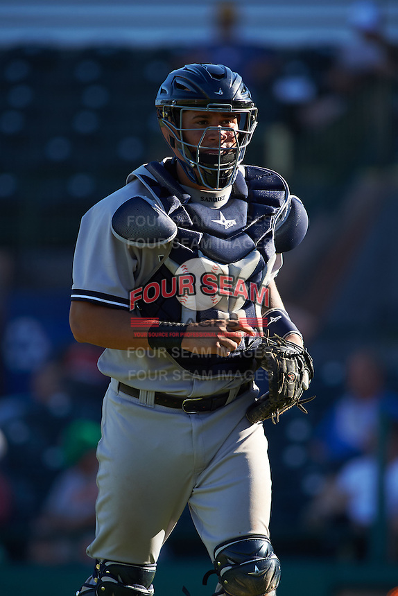 Surprise Saguaros catcher Gary Sanchez (78) jogs to the dugout during an Arizona Fall League game against the Scottsdale Scorpions on October 22, 2015 at Scottsdale Stadium in Scottsdale, Arizona.  Surprise defeated Scottsdale 7-6.  (Mike Janes/Four Seam Images)