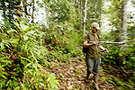 Bornean Clouded Leopard (Neofelis diardi borneensis) researcher Andrew Hearn radio tracking in secondary lowland rainforest, Kinabatangan River, Sabah, Borneo, Malaysia