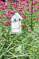 63821-207.05  Birdhouse in garden with Raspberry Wine Bee Balm (Monarda didyma 'Raspberry Wine')  Marion Co. IL
