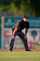 Umpire Paul Roemer during a NY-Penn League game between the Auburn Doubledays and Batavia Muckdogs on June 18, 2019 at Dwyer Stadium in Batavia, New York.  Batavia defeated Auburn 7-5.  (Mike Janes/Four Seam Images)