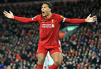 24th February 2020; Anfield, Liverpool, Merseyside, England; English Premier League Football, Liverpool versus West Ham United; Virgil van Dijk of Liverpool appeals to the linesman for handball against a West Ham defender