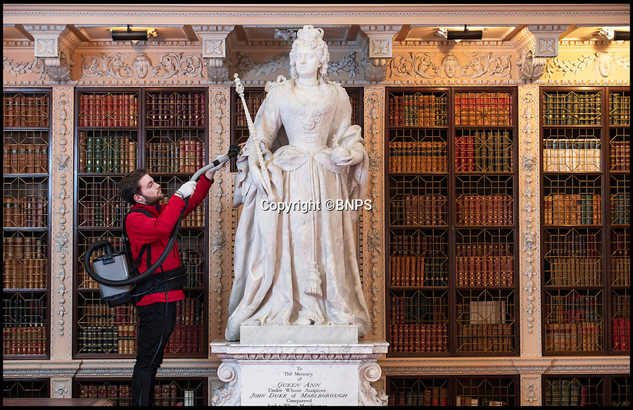 BNPS.co.uk (01202 558833)<br /> Pic: PhilYeomans/BNPS<br /> <br /> The beautiful marble statue of Queen Anne commissioned by a grateful Duke and Duchess also gets a careful hoovering..<br /> <br /> The real-life characters behind Olivia Colman's Oscar-tipped film The Favourite have been reunited as part of Blenheim Palace's annual deep clean.<br /> <br /> The portraits of Queen Anne, played by Colman in the film, and Sarah, the first Duchess  of Marlborough, who was portrayed by Rachel Weisz, have been brought together in Blenheim's Great Hall to allow a team of specialist's to undertake the winter clean.<br /> <br /> The film, a historical comedy/drama, depicts the tumultuous relationship between the pair in the early 18th century.<br /> <br /> The land to build Blenheim was gifted to the first Duke and Duchess by Queen Anne after John Churchill's stunning pan-european alliance defeated Louis XIV of France.<br /> <br /> Despite Anne gifting them the land to build the magnificent Palace she also eventually stripped them of their official roles at Court after falling out with strong minded Duchess.