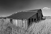 An Old Barn Weathers in the Summer Sun in Will County, Illinois.  This old barn awaits the fate of many such buildings; a new mall and urban development in a area once rural and farmed based, but now in the midst of suburbia.