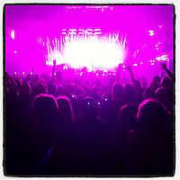 The stage lights at the Electric Factory cast a magenta light on the audience during Passion Pit's November 29, 2012 performance.