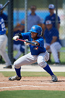 Toronto Blue Jays center fielder Steward Berroa (14) squares around to bunt during a Florida Instructional League game against the Pittsburgh Pirates on September 20, 2018 at the Englebert Complex in Dunedin, Florida.  (Mike Janes/Four Seam Images)