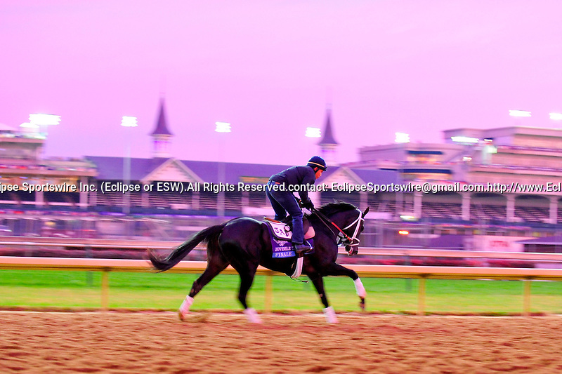 November 3, 2011: Finale , trained by Todd Pletcher and to be ridden by John Velazquez exercises in preparation for the 2011 Breeders' Cup at Churchill Downs on November 3, 2011.