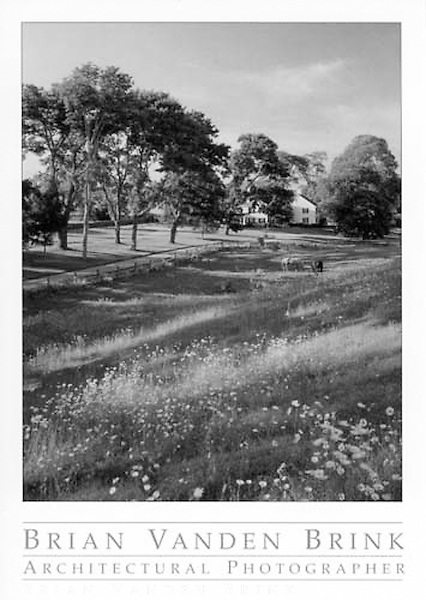 HORSES IN THE MEADOW<br /> Tashmoo Farm<br /> Martha's Vineyard, Massachusetts<br /> Horiuchi &amp; Solien Landscape Architects &copy; Brian Vanden Brink, 2004