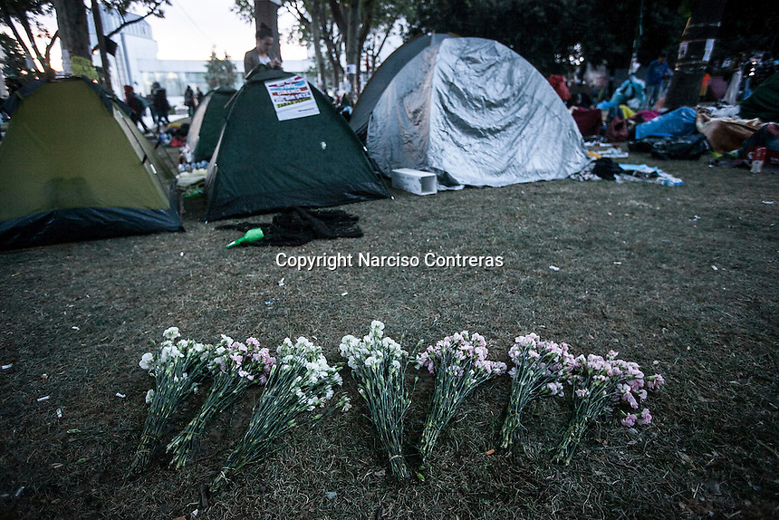 Flowers bouquets are seen lying on the grass behind the tents used by protestors as down rises up in Gazi park of Taksim Square during a 24/7 masive rally against the turkish government in Istanbul, Turkey.