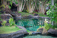Pond and garden at Na Aina Kai Botanical Gardens. Kauai, Hawaii