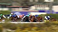 DEL MAR, CA - NOVEMBER 04: The field blurs down the track during the Breeders' Cup Filly and Mare Turf race on Day 2 of the 2017 Breeders' Cup World Championships at Del Mar Racing Club on November 4, 2017 in Del Mar, California. (Photo by Jamey Price/Eclipse Sportswire/Breeders Cup)