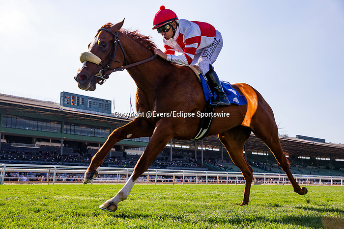 JAN 11: Jolie Olimpica with Mike Smith sets a track record winning the La Cienegas Stakes at Santa Anita Park in Arcadia, California on January 11, 2020. Evers/Eclipse Sportswire/CSM