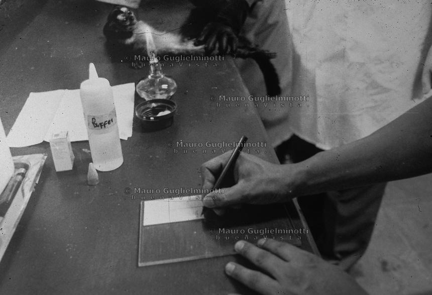 studi sulla malaria - Università di Cali e il villaggio di Buenaventura iniezione a lemuri