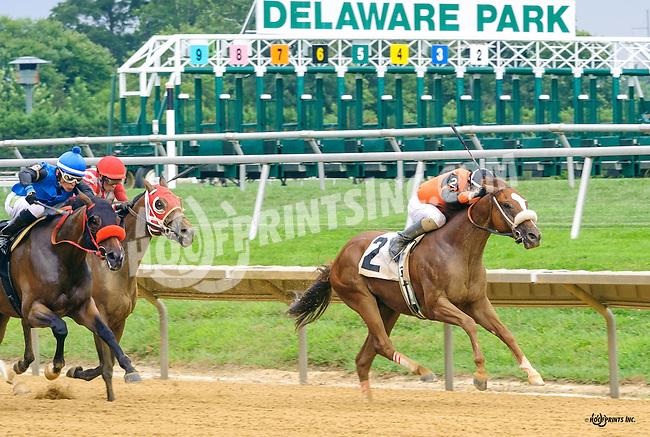Celtic Moon winning at Delaware Park on 8/25/16
