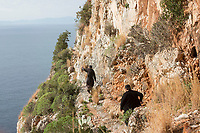 Mount Athos - The Holy Mountain.<br /> Monks make their way to visit a friend in Karoulia.<br /> <br /> Photographer: Rick Findler