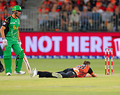 3rd February 2019, Optus Stadium, Perth, Australia; Australian Big Bash Cricket League, Perth Scorchers versus Melbourne Stars; Andrew Tye of the Perth Scorchers lays on the pitch after a caught and bowled chance went down