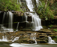 Great Smoky Mountains National Park, TN/NC<br /> Toms Branch Falls on Deep Creek in early spring - Deep Creek Nature Trail