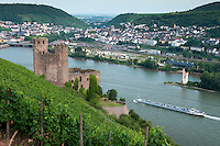 Rudesheim am Rhein, Hessen, Germany, July 2010.  The ruins of Burg Ehrenfels castle stand in the middle of the vineyards. The vinyards around Rudesheim offer spectacular views of the the river Rhine. Rüdesheim is a winemaking town in the Rhine Gorge and thereby part of the UNESCO World Heritage Site. The fertile river valleys and the rolling hills form the basis for some of Germany's best wines.  Photo by Frits Meyst / Adventure4ever.com