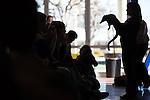 Berry Kirshner Wildlife Foundation visits Los Altos High School
