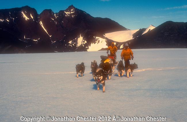 K Polar Huskies Mawson Station Antarctica,