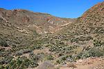 Cabo de Gata national park, Monsul, near San José, Almeria, Spain