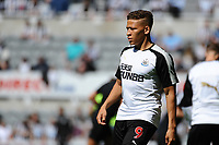 Dwight Gayle of Newcastle United during Newcastle United vs Tottenham Hotspur, Premier League Football at St. James' Park on 13th August 2017