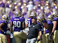 Defensive line coach Ikaika Malloe is fired up after a big play by the Huskies.