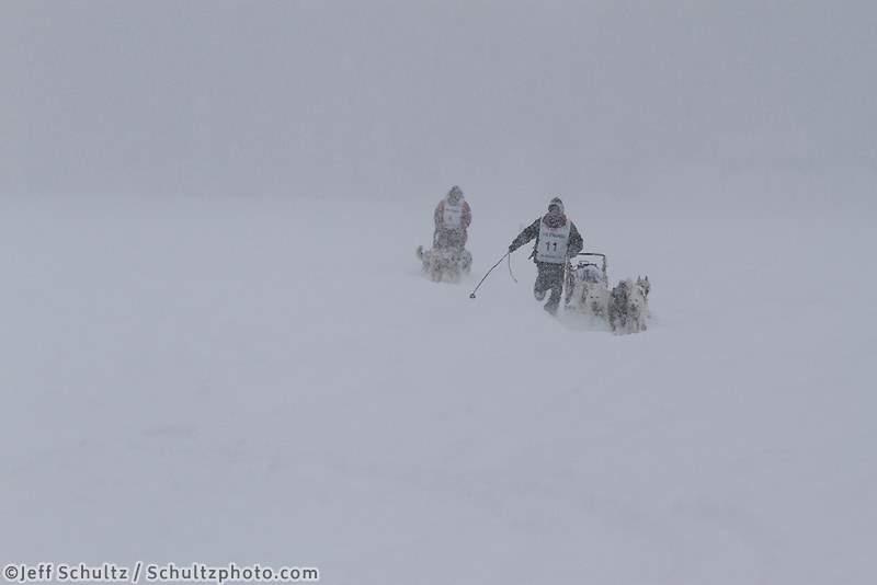 Conway Seavey runs behind his sled, being followed closely by Ben Lyon as the cross Willow Lake in a white-out snow-storm just yards from the finish line.  Conway came in first place, Lyon trailed by just one minute.