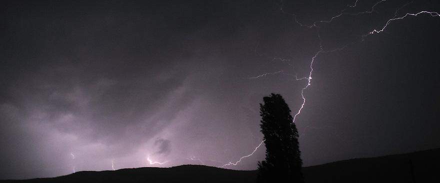 Thunder storm and Lightening bolt over Galicica mountain range, Galicica National Park, Macedonia. View South towards Konjsko. Lombardy Poplar, Populus nigra, in foreground.<br /> Stenje region, Lake Macro Prespa (850m) <br /> Galicica National Park, Macedonia, June 2009<br /> Mission: Macedonia, Lake Macro Prespa /  Lake Ohrid, Transnational Park<br /> David Maitland / Wild Wonders of Europe