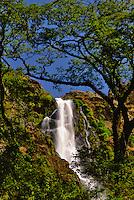 Cerradao waterfall ( Cachoeira do Cerradão ), .at Canastra Range National Park ( Parque Nacional da Serra da Canastra ) - Minas Gerais State, Brazil.