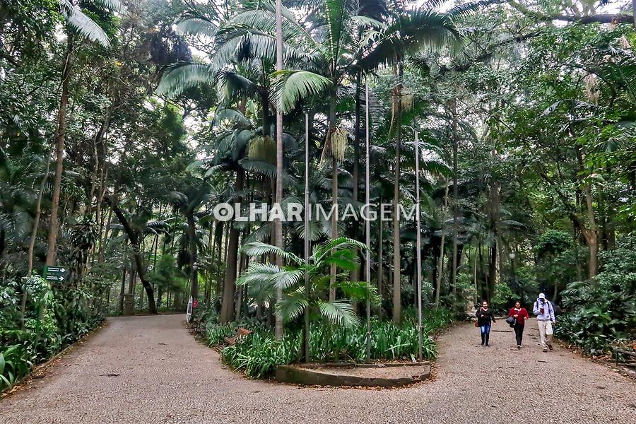 Parque Trianon, avenida Paulista, Sao Paulo. 2019. Foto Juca Martins